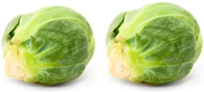 orgasmic sprouts